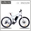 MOTORLIFE/OEM direct factroy supply 36V250W electric mountain motor bike