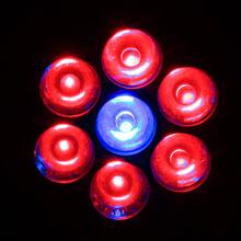 E27 7W Par30 LED Plant Lamp Hydroponic Par30 led Grow Light
