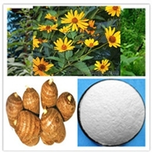 chicory root extract inulin Jerusalem artichoke extract Inulin 90%