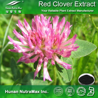 Top Quality Red Clover Extract Isoflavones 8% 20% 40%
