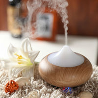 2014 hot sales bird medicine - aroma diffuser GX