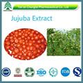 Gmp fornecimento fabricante de alta qualidade melhor preço Jujuba extract / Spina semente data