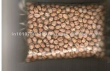 Evergreen quality Chick peas 8 mm for 8 mm Philippines