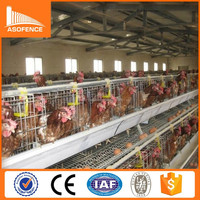 Kenya and Nigeria hot sale chicken house farm equipment / poultry farming equipment / poultry equipment
