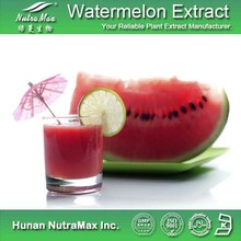 Food Grade Supplement Natural Natural Watermelon Juice Powder