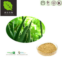 Certificated ISO Manufacturer Natural Bulk powdered Aloe Vera Gel