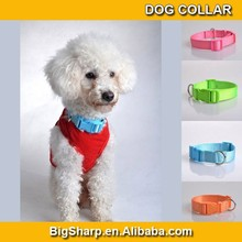 Durable charm nylon dog collar for training and hunting Plain Nylon Pet Dog Collar Wholesale cheap price