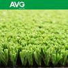AVGrass autum artlawn SGS CE Golf Tee Grass2015