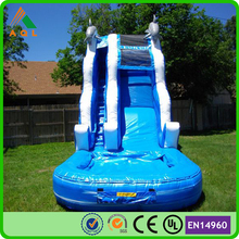 High strength PVC water slide inflatable/ dolphin inflatable water slide