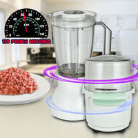 High Quality Powerful 2 in 1 Electric Meat Chopper