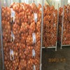 /product-gs/chinese-onion-market-price-for-onion-price-ton-60302039509.html