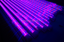 Best price PAR38 top rated 630nm red led for plant tissue culture led grow tube light