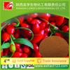Manufacturer sales frozen goji berry