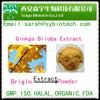 Ginkgo biloba 24%flavone glycosides triterpenes