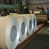 color prepainted steel coils