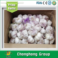 High quality fresh normal white garlic 6.0 for sale 2015