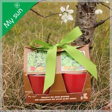 Degradable flower pot , DIY mini pplanting, flower pot with seeds