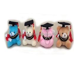 cheap graduation teddy bear for 2014