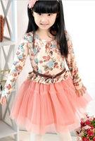 Korean Style Pretty Summer Girl Dress, Highly Fashion Elegant Dress In 2013