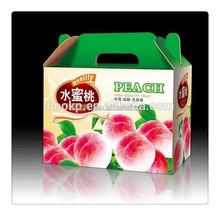 wholesale dry fruit / fruit / apples carton box gift box
