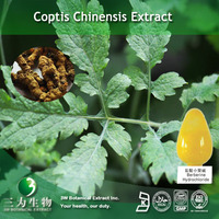 2014 Hot Selling Berberine Extract Of Coptis chinensis In Low Price