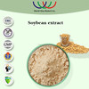 HACCP KOSHER FDA China supplier hormone replacement therapy 40% bean bulp extract soy isoflavone