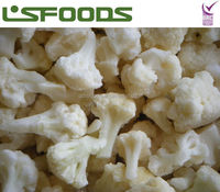 New Crop IQF Frozen Cauliflower Made in China