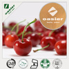Hot sale free sample high quality 25% Vitamin C Natural Acerola Cherry Extract Acerola Cherry P.E. or Acerola Cherry E.P.