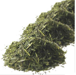 China Famous Top Quality Organic Herbal Green Tea