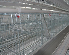 China factory chicken house design for layer/manure belts