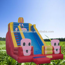 Children Large Inflatable Slip and Slide