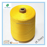 DTY 50d 75d 100d 150d Polyester Twisted Yarn
