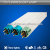 Main product 20000hrs T5 fluorescent lamp price