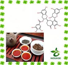 Pure Black Tea Extract Powder