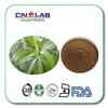 CN LAB ISO Factory Supply High Quality Organic Ashitaba Extract powder