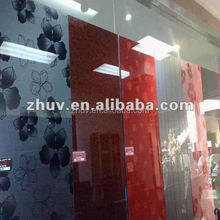 Glossy Lot of Design Acrylic Sheet for Furniture