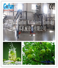 apple/buleberry/mango/peach juice processing plant