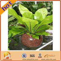 Convenient Benefits potting soil