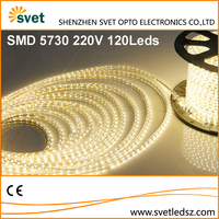 220V SMD 5730 60 Leds/M Dimmable Led Strip Light Specification Underwater IP67 Waterproof