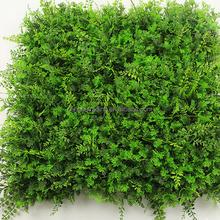Rich Assorted leaf carpet grass