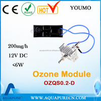 200mg/h 12v Spare Parts for Generators for Ozone Making in Air and Water Purification