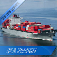 cheap air freight china to india departure: china fast speed safty A+