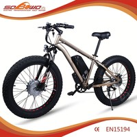 seagull electric bike economic bicycle prices