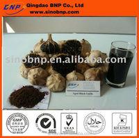 GMP BNP Supply Aged Black Garlic Liquid Extract