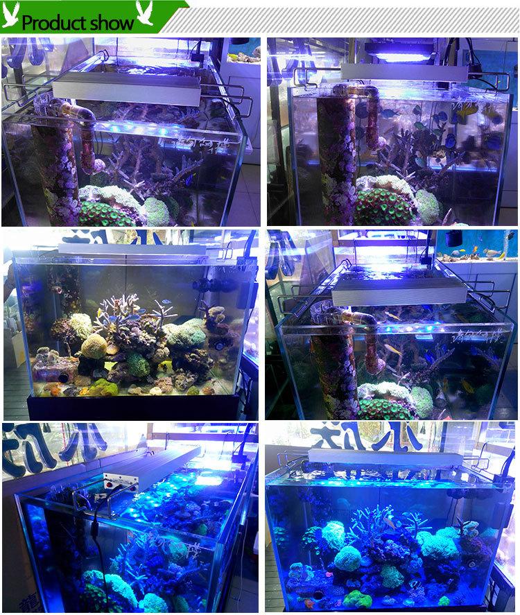 cheap led aquarium light for sale fit for nano tanks and