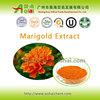 /p-detail/natural-suplemento-de-salud-de-la-flor-de-cempas%C3%BAchil-extracto-puro-de-la-lute%C3%ADna-300005274398.html
