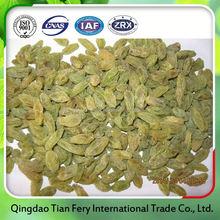 new crop sultana raisin