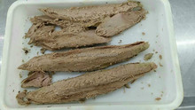 Frozen precooked skipjack tuna for Canned