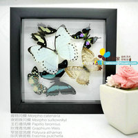 FOUSEN(045) Nature& Art natual home decoration supplier photo frame plastic