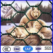 China supplier PVC galvanized chicken wire mesh philippines